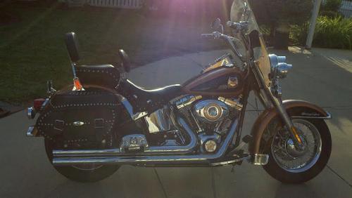 Harley Davidson Dealership Encinitas Ca >> 2008 Harley-Davidson® FLSTC-ANV Heritage Softail® Classic Anniversary (Copper Pearl and Vivid ...