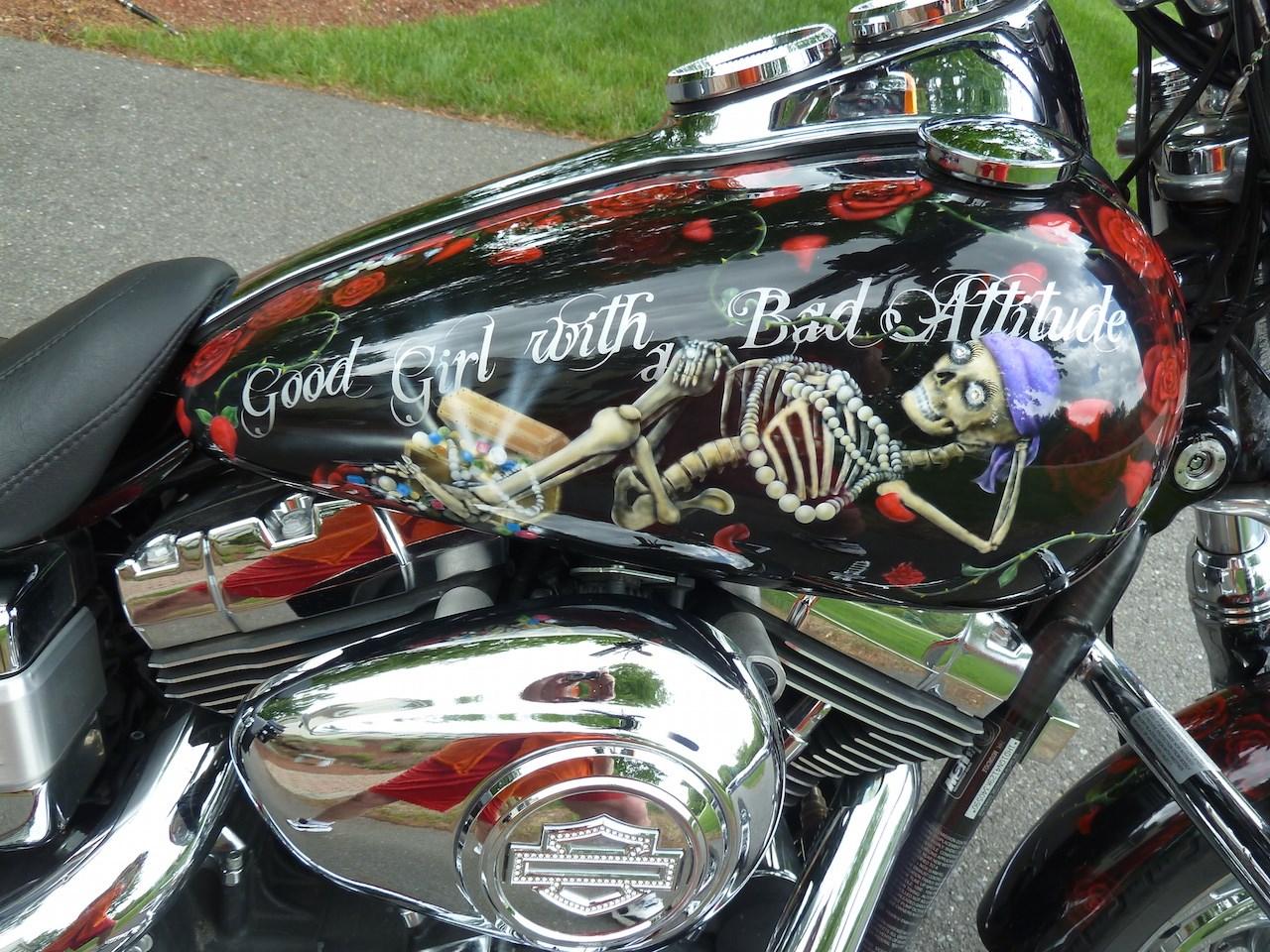 2009 Harley Davidson 174 Fxdl Dyna 174 Low Rider 174 Custom