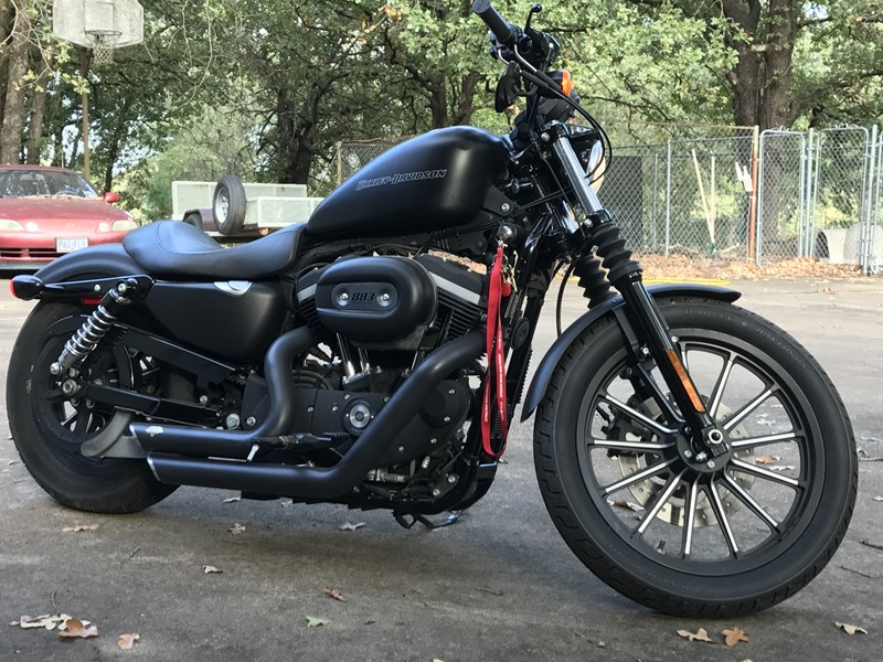Photo of a 2009 Harley-Davidson® XL 883N Sportster® Iron 883™