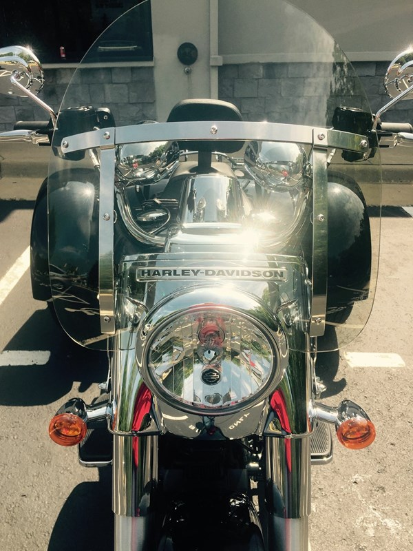 Photo of a 2015 Harley-Davidson® FLRT Freewheeler™