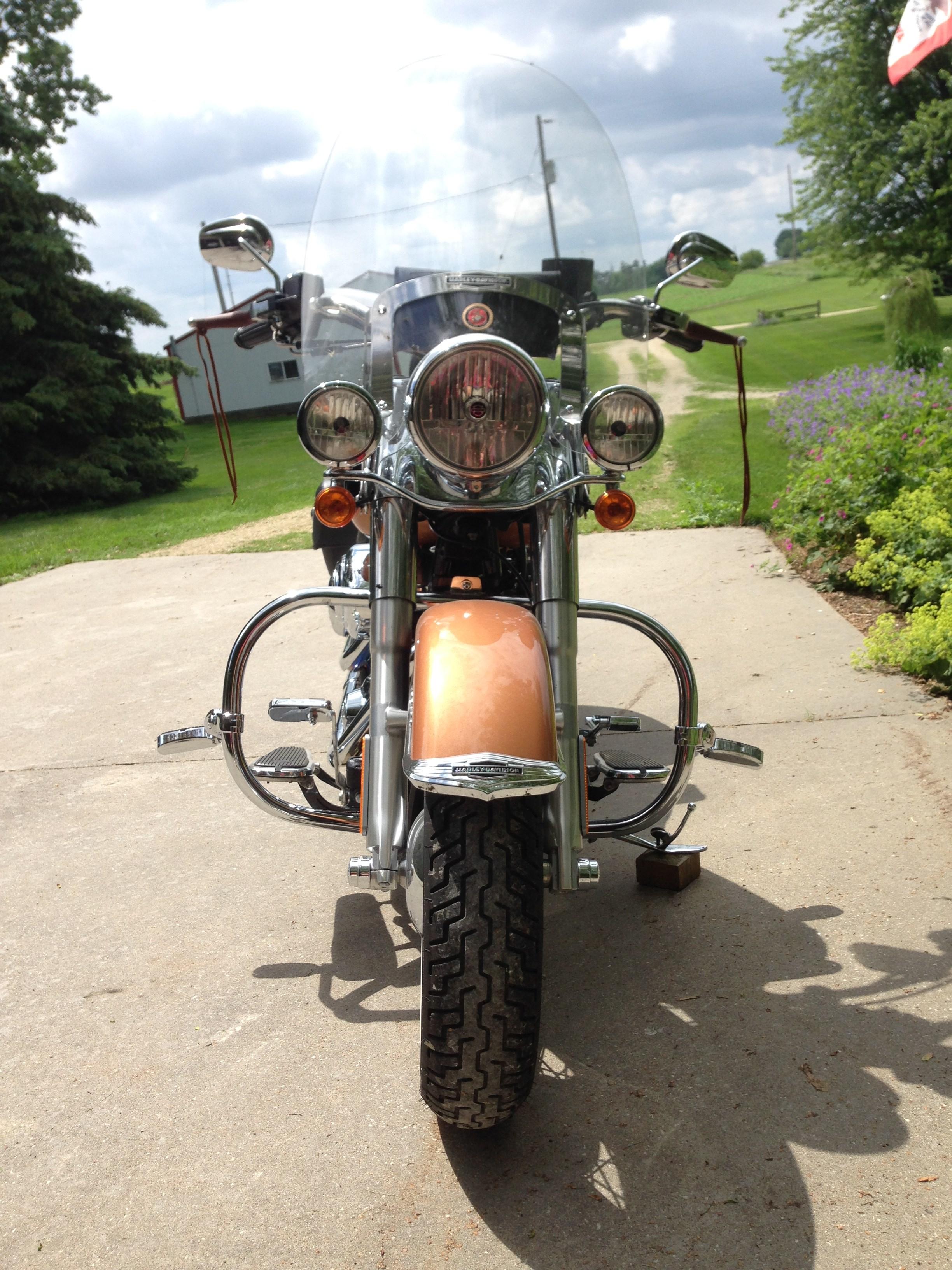 Copper Derby Cover : Harley davidson flstn anv softail deluxe