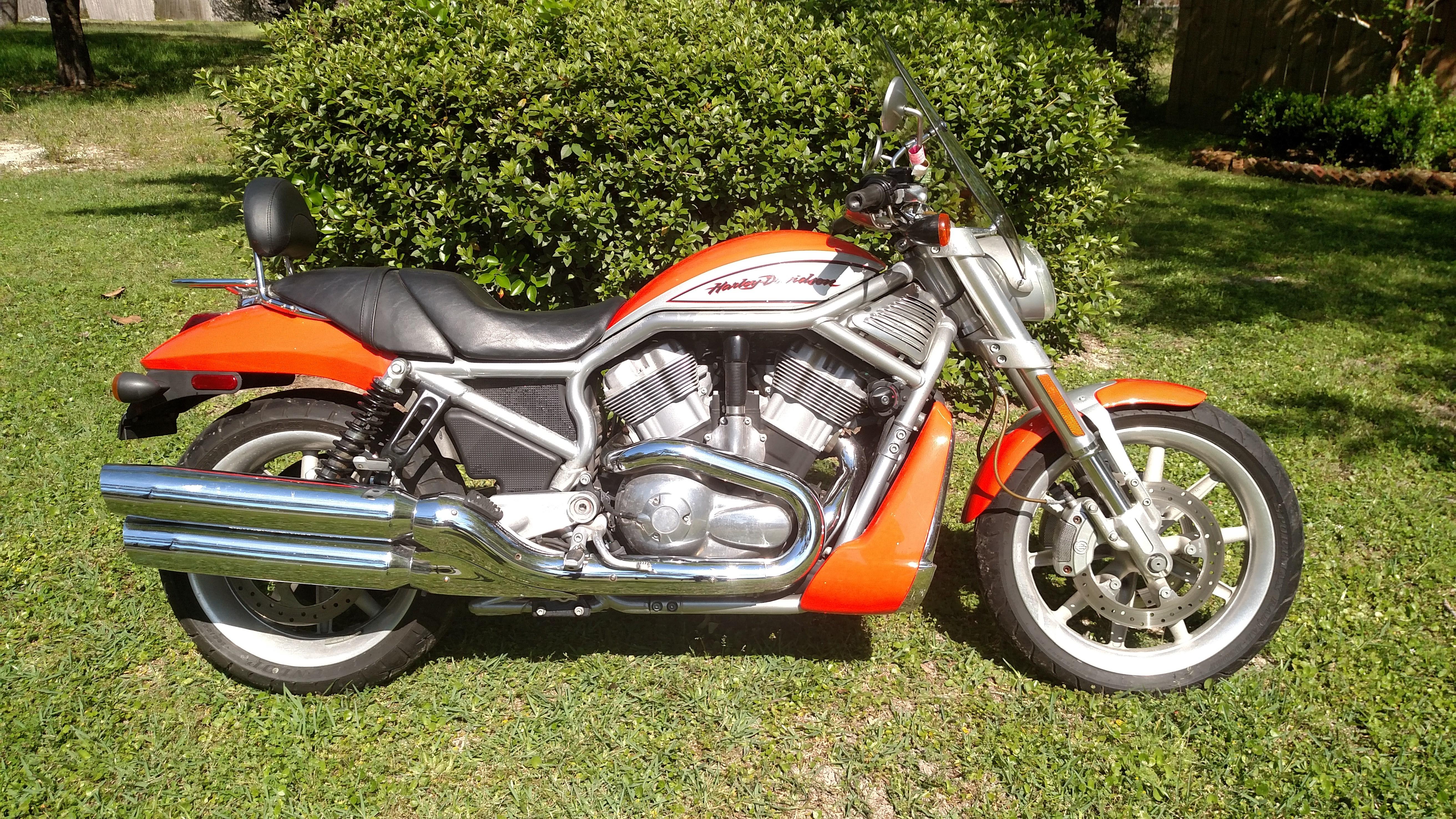 2006 Harley-Davidson® VRSCR V-Rod® Street Rod (Harley ...