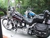 Photo of a 1994 Harley-Davidson® FXSTC Softail® Custom