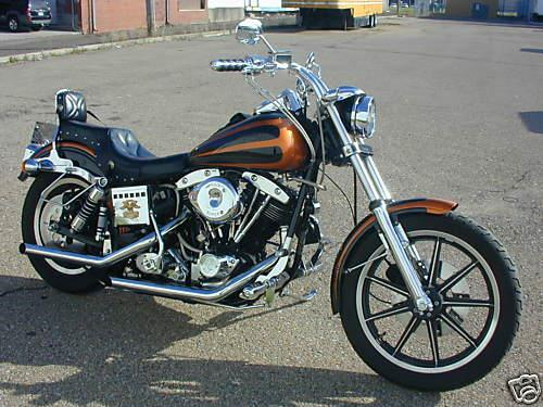Photo of a 1984 Harley-Davidson® FXSB Low Rider® Sturgis™ Special