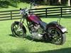 Photo of a 1998 Harley-Davidson®  Custom