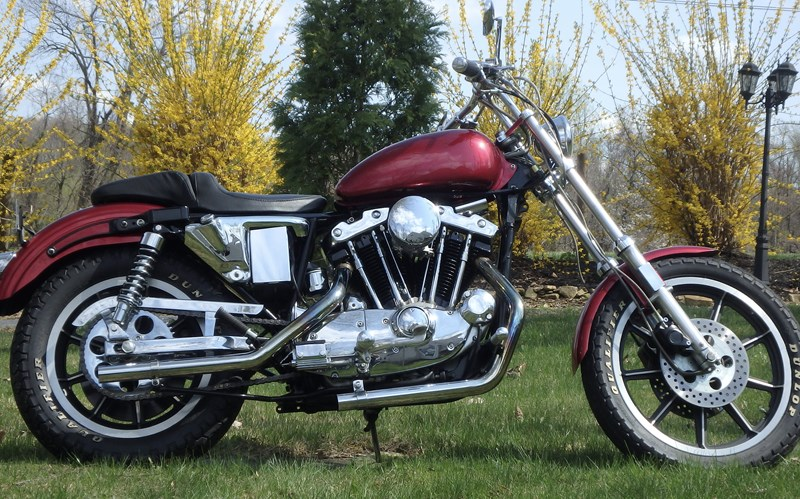 Photo of a 1981 Harley-Davidson® XLS Sportster® Roadster®