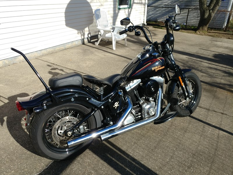 Photo of a 2010 Harley-Davidson® FLSTSB Softail® Cross Bones™