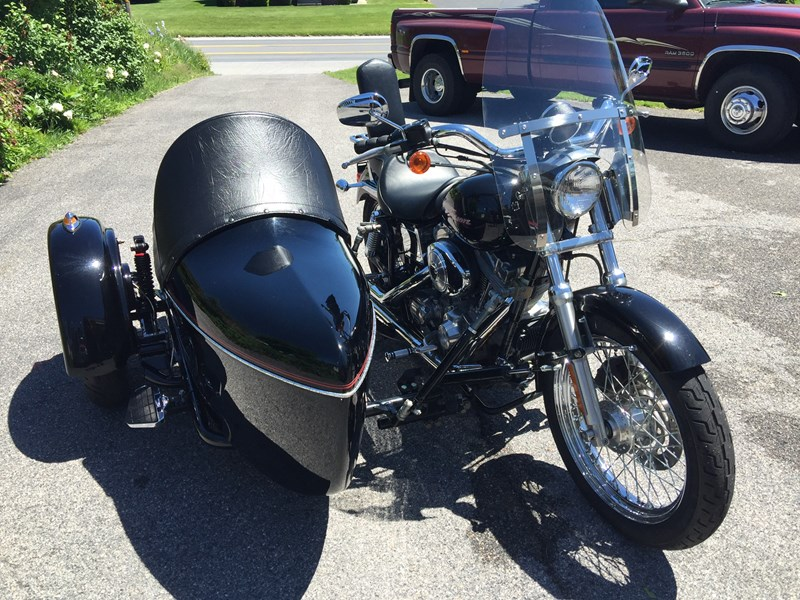 Photo of a 2004 Harley-Davidson® TLE Sidecar