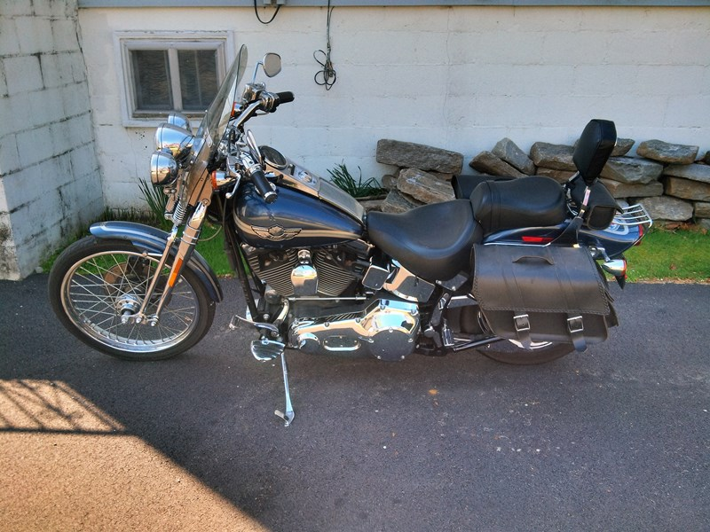 Photo of a 2003 Harley-Davidson® FXSTS-ANV Springer® Softail® Anniversary