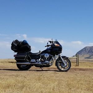 Used 1986 Harley-Davidson® Sport Glide® Grand Touring