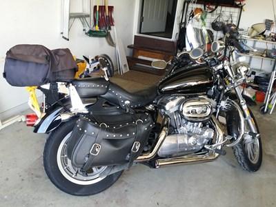 Used 2005 Harley-Davidson® Sportster® 883 Custom