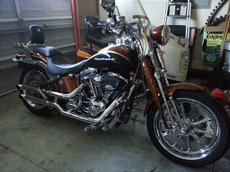 Harley Dealer Baytown Tx >> 2008 Harley-Davidson® FXSTSSE2-ANV Screamin' Eagle® Softail® Springer® Anniversary (Copper, gold ...