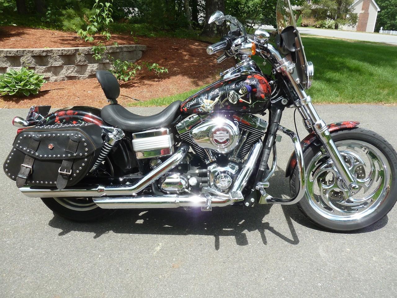 2009 Harley-Davidson® FXDL Dyna® Low Rider® (Custom
