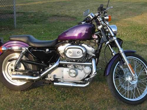 2001 Harley Davidson 174 Xl883c Sportster 174 883 Custom