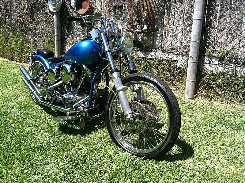 Photo of a 1983 Special Construction  Bobber