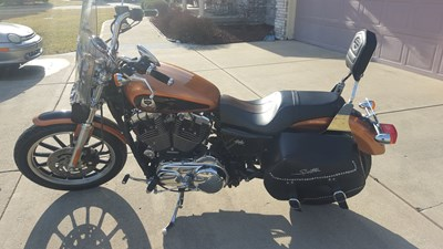 Used 2008 Harley-Davidson® Sportster® 1200 Low Anniversary