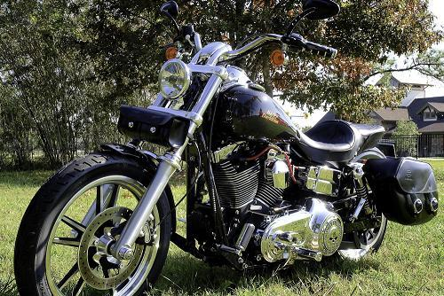 Photo of a 2009 Harley-Davidson® FXDL Dyna® Low Rider®