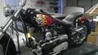 Used 2005 Harley-Davidson® Softail® Custom
