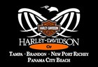 Harley-Davidson of Tampa Brandon New Port Richey's Logo