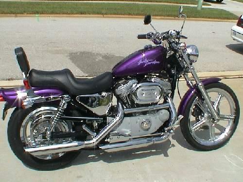 2000 Harley-Davidson® XL883C Sportster® 883 Custom