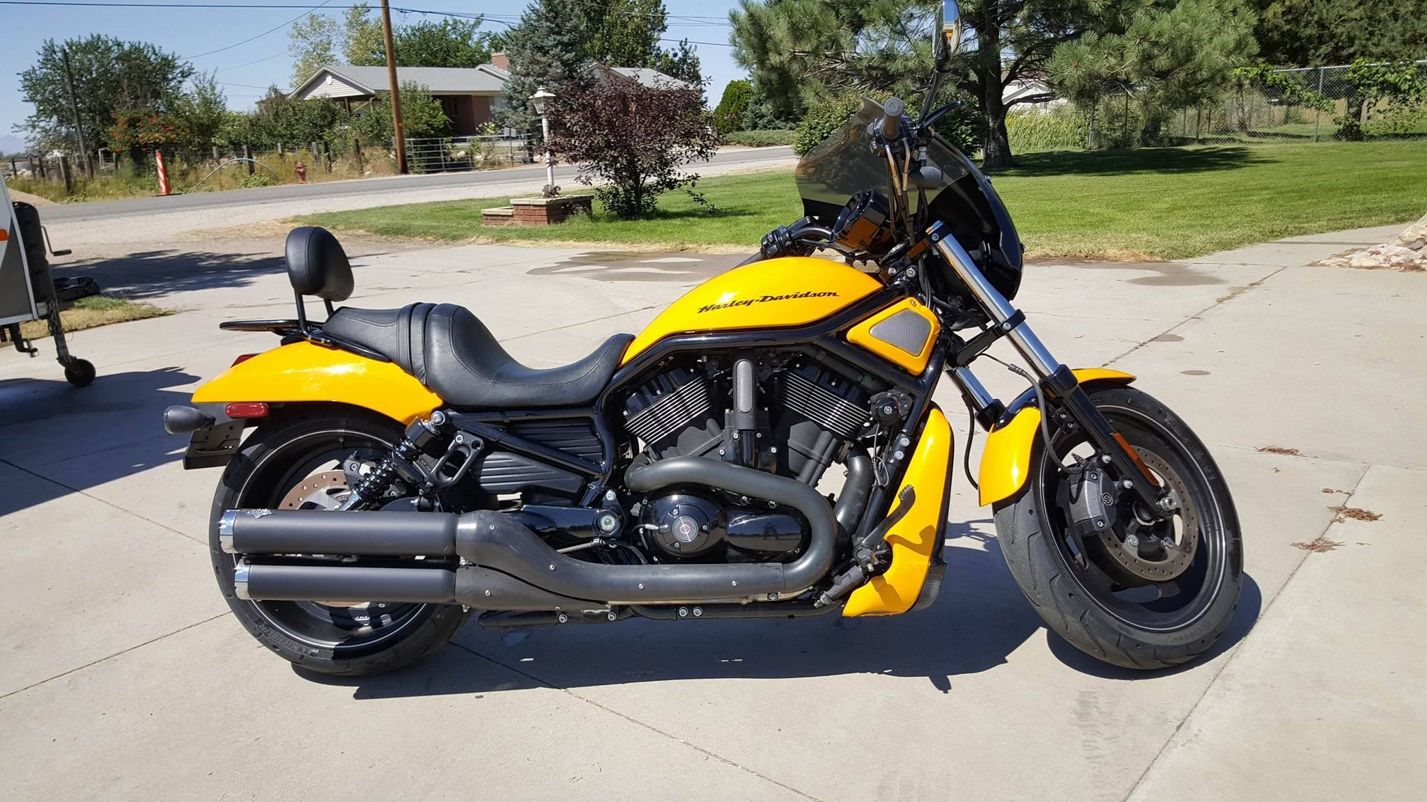 all new used harley davidson v rod night rod 183 bikes page 1 chopperexchange. Black Bedroom Furniture Sets. Home Design Ideas