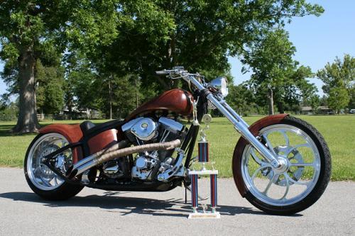 2003 Harley-Davidson® Custom (Faux Look Brown), Gulfport ...