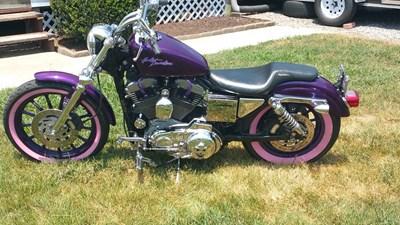 Photo of a 2002 Harley-Davidson® XLH-883 Sportster® 883