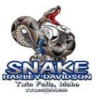 Snake Harley-Davidson's Logo