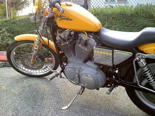 2001 Harley Davidson 174 Xl883c Sportster 174 883 Custom Yellow