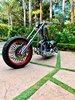 Photo of a 2003 American IronHorse  Texas Chopper