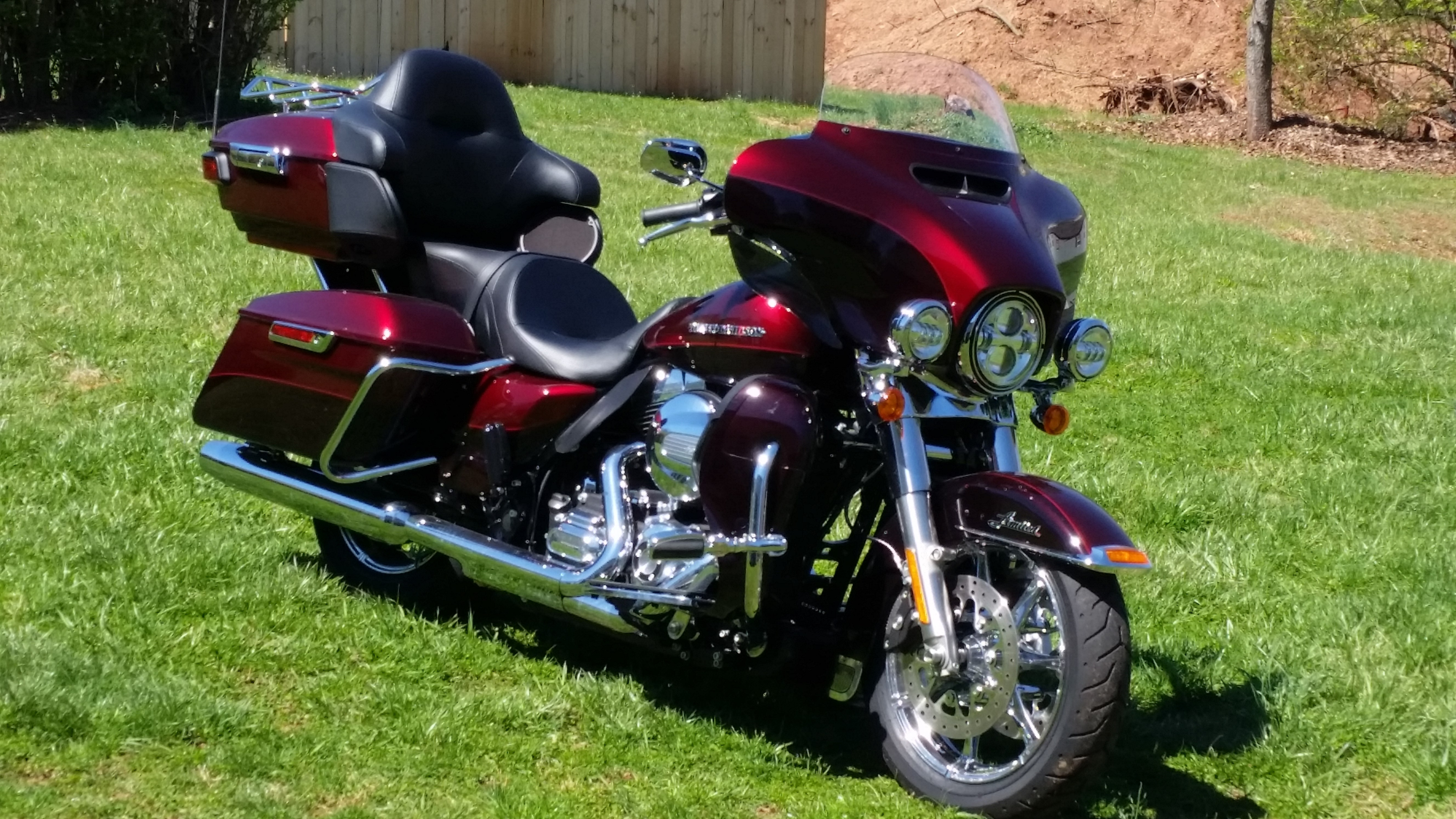 Used Harley Davidson Under