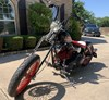 Photo of a 1999 Special Construction  Bobber
