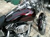 Photo of a 2004 Harley-Davidson® FXDWG/I Dyna Wide Glide®