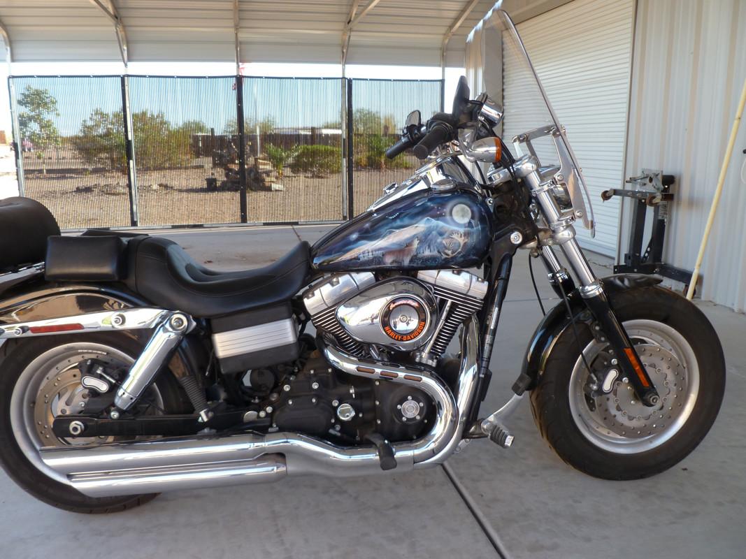 Photo of a 2009 Harley-Davidson® FXDF Dyna® Fat Bob™