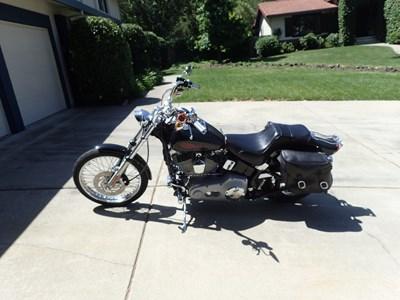 Used 2001 Harley-Davidson® Softail® Standard