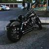 Photo of a 2015 Harley-Davidson®  Custom