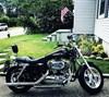 Photo of a 2015 Harley-Davidson® XL1200C Sportster® 1200 Custom