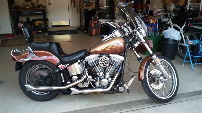 1985 Harley-Davidson® FXST Softail® (Brown/Gold), Oceanside ...