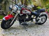 Photo of a 2002 Harley-Davidson® FLSTF/I Softail® Fat Boy®