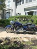 Photo of a 2009 Harley-Davidson®  Custom