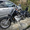 Photo of a 1996 Honda® VT1100B Shadow 1100