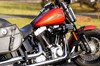 Photo of a 2011 Harley-Davidson® FLSTSB Softail® Cross Bones™