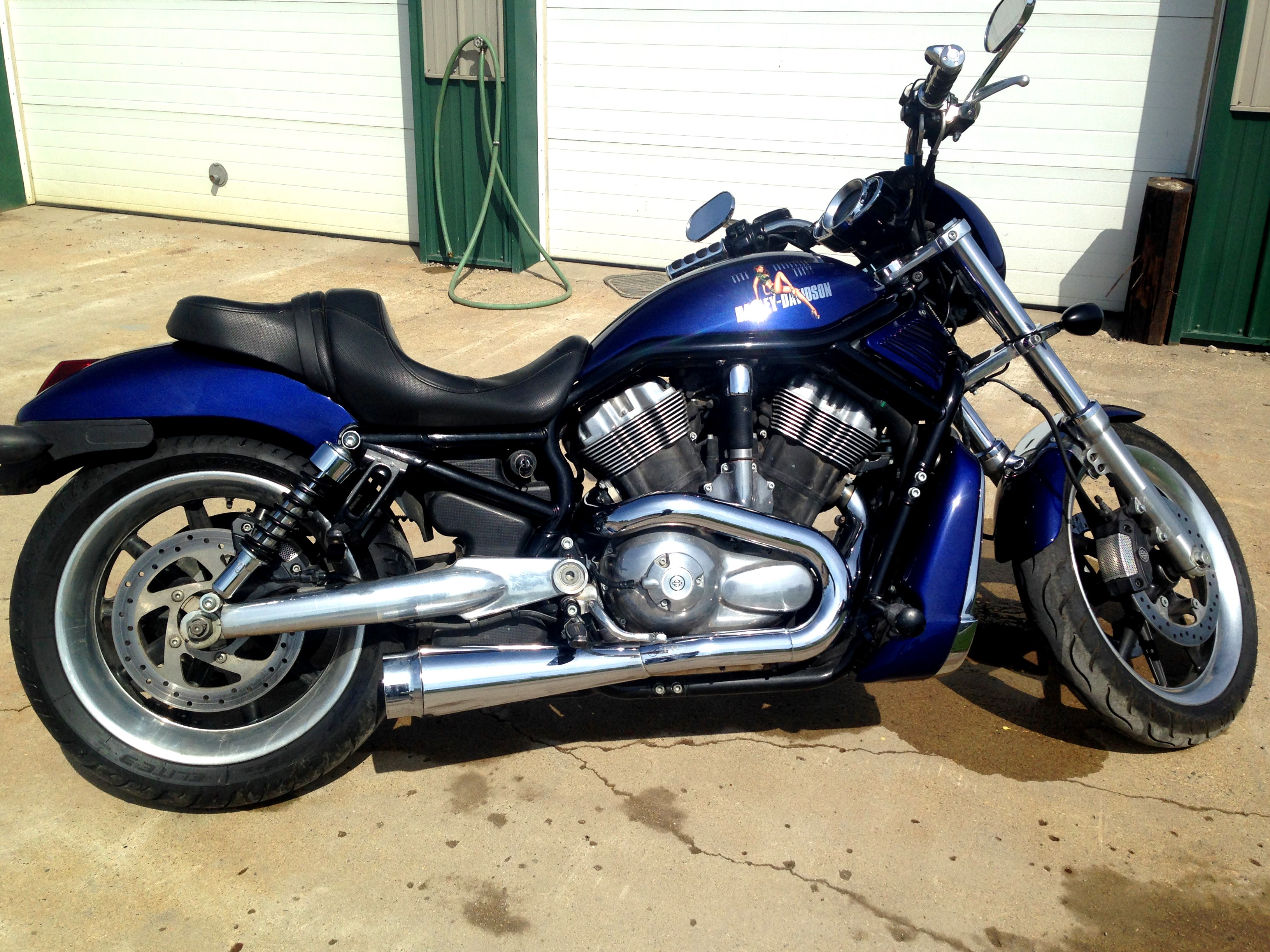 2006 harley davidson vrscd v rod night rod cobalt blue osakis minnesota 721076. Black Bedroom Furniture Sets. Home Design Ideas