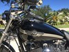 Photo of a 2003 Harley-Davidson® FXDL-ANV Dyna® Low Rider® Anniversary