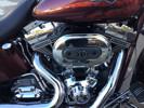 Photo of a 2012 Harley-Davidson® FLSTSE3 CVO™ Softail® Convertible