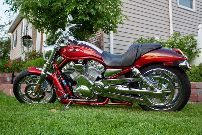 Photo of a 2005 Harley-Davidson® VRSCSE Screamin' Eagle® V-Rod®