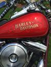 Photo of a 1986 Harley-Davidson® FXSTC Softail® Custom