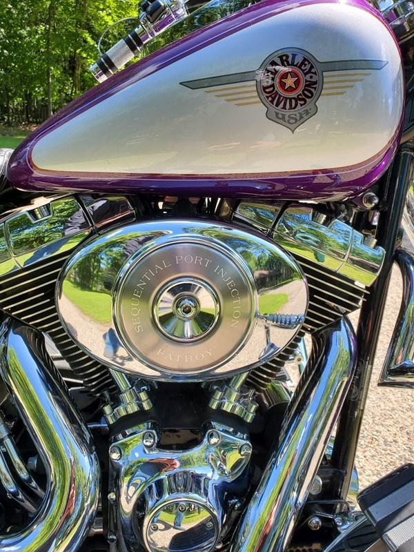 Photo of a 2001 Harley-Davidson® FLSTF/I Fat Boy®