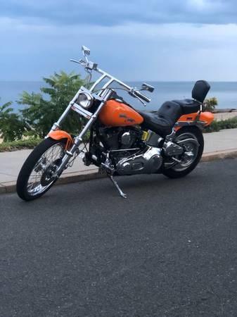 Photo of a 1989 Harley-Davidson® FXSTC Softail® Custom