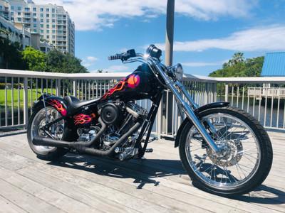 Used 2001 Harley-Davidson® Custom